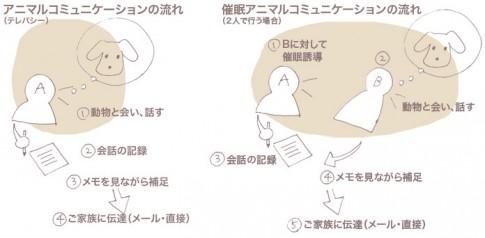 9/7.12京都新風館。催眠アニマルコミュニケーションのセッション行います。