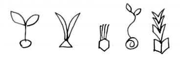 9つの本質、種
